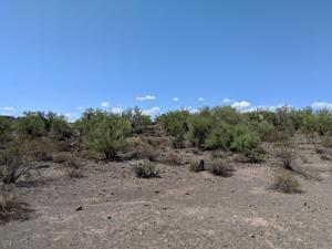2333 W Black Canyon Drive Lot - New River, Az 85087