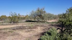 1540 W Rambling Road Lot 211-51-053f Phoenix, Az 85086