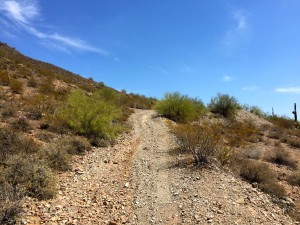 700 E Quartz Rock Road Lot Metes And Bounds Phoenix, Az 85085
