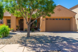 3409 W Little Hopi Drive Phoenix, Az 85086