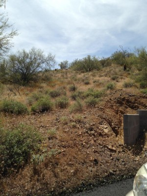 3317 W Rambling W Road Lot L Desert Hills, Az 85086