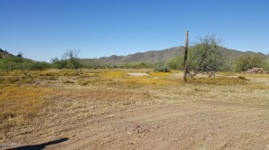 44635 N 6th Street Lot 47 New River, Az 85087