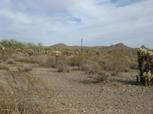 48400 N 24th Lane Lot 202-10-993 New River, Az 85087