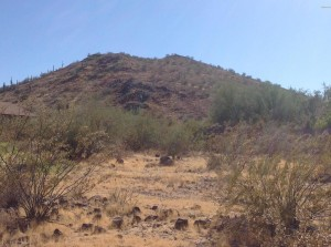 W Horizon Drive Phoenix, Az 85064