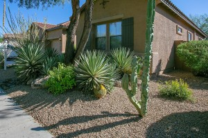 2341 W Bramble Berry Lane Phoenix, Az 85085