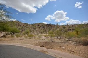 14252 S 14th Street Lot 12 Phoenix, Az 85048
