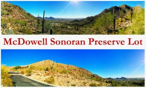 13417 N 137th Street Lot 7 Scottsdale, Az 85259