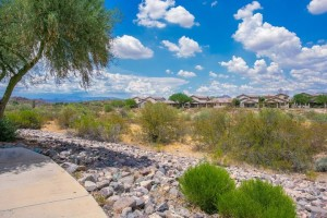 38913 N Red Tail Court Anthem, Az 85086
