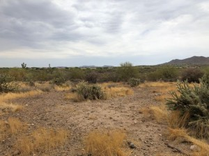 N 6th Avenue Lot 211-73-146 Desert Hills, Az 85086