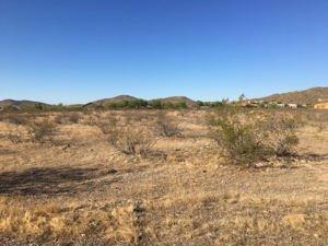 1200 E Carefree Hwy Highway Lot - Phoenix, Az 85085