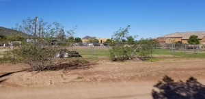 3641x N 15th Avenue Lot - Phoenix, Az 85086