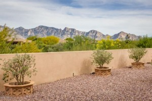13898 N Bowcreek Springs Place Oro Valley, Az 85755