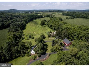 6117 Lower Mountain Rd New Hope, Pa 18938