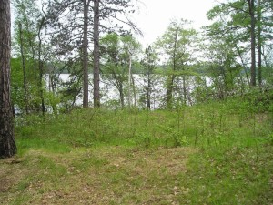 40830 W Fox Lake Road Fifty Lakes, Mn 56448