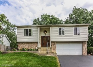 156 Thackeray Drive Bolingbrook, Il 60440