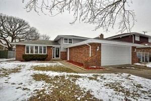 10704 South Meadow Lane Palos Hills, Il 60465