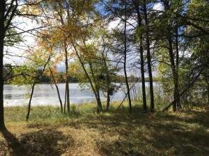 29299 Surfland Road Mission Twp, Mn 56465
