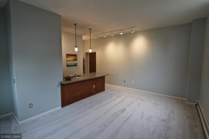 215 7th Street Ne Unit 101 Minneapolis, Mn 55413