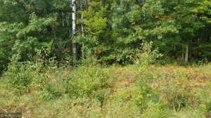 Lot 0 Tranus Lake Road Stinnett Twp, Wi 54876