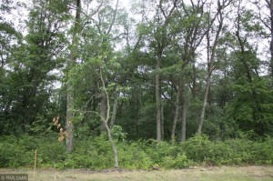 Lot 3 Golden Oak Drive Brainerd, Mn 56401