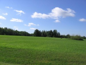 Lot 2 Doug Blegen Spring Valley, Wi 54767