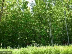 Lot 4 63rd Avenue Nw Walker, Mn 56484