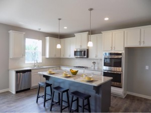 4106 Painted Sky Trail Chaska, Mn 55318