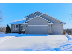 19204 Evening Star Way Farmington, Mn 55024