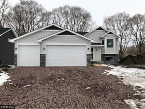 1041 Washington Street Anoka, Mn 55303
