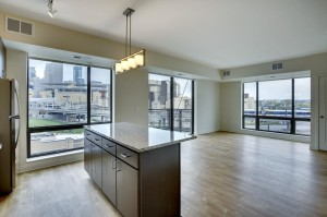 643 N 5th Unit 315 Minneapolis, Mn 55401