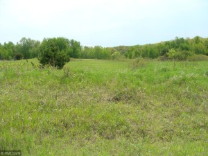 Xxx Lot 16 209th Street Eureka Twp, Wi 54024