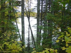 Lot 2 Hwy B Round Lake Twp, Wi 54843