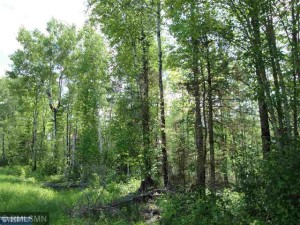 Tbd Mattila Road Pike Twp, Mn 55792