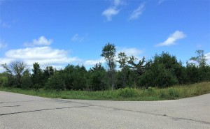 Lot 8 Ne Co Rd 9 New London, Mn 56273