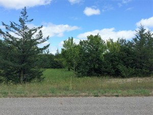 Lot 5 Ne Co Rd 9 New London, Mn 56273
