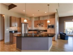 4201 Sunset Drive Unit N518 Spring Park, Mn 55384