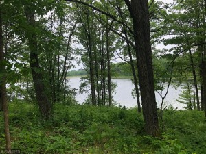 Tbd Turtle Lake Drive Nw Walker, Mn 56484