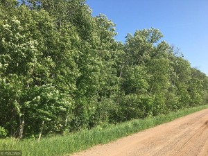 Tbd Hillman Road Brainerd, Mn 56401