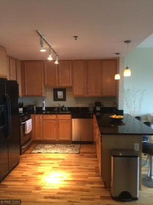 929 Portland Avenue Unit 407 Minneapolis, Mn 55404