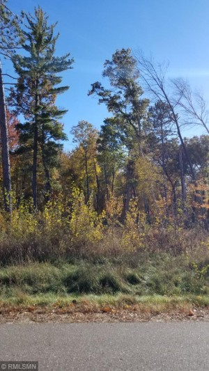 Lot 1 Block3 Drahos Road Brainerd, Mn 56401