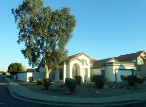16417 S 41st Street Phoenix, Az 85048