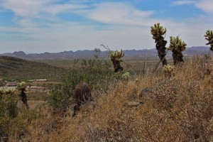 3413 W Rambling W Road Lot '-' Desert Hills, Az 85086