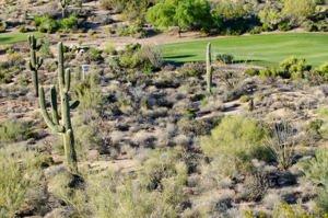 10765 E Cinder Cone Trail Lot 96 Scottsdale, Az 85262