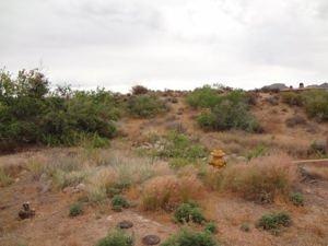 11913 E Hackamore Drive Lot 8 Scottsdale, Az 85255