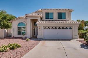 11809 S 45th Street Phoenix, Az 85044