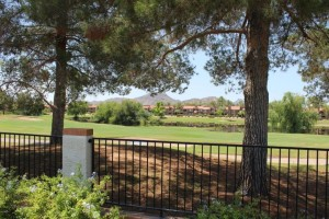 11008 N 50th Street Scottsdale, Az 85254