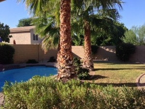 315 E Mountain Sky Avenue Phoenix, Az 85048