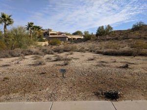 12839 S Warpaint Drive Lot 7115 Phoenix, Az 85044