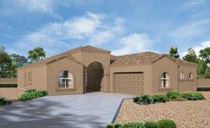 13250 W Tiger Aloe Place Tucson, Az 85743