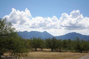3612 S Camino De La Canoa S Unit 77-80 Green Valley, Az 85614